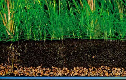 Комнатные растения  и правильный подбор почвенного субстрата в интернет-магазине Plant-Palace.ru